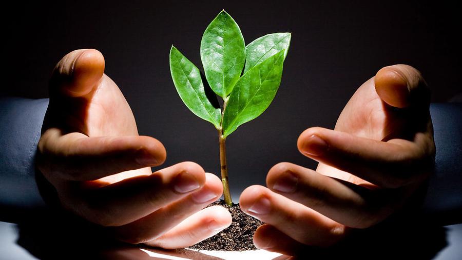 种子轮融资前 早期创企必须知道的15件事